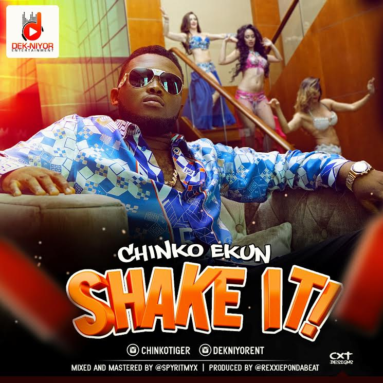 Chinko Ekun - Shake It