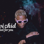 Wizkid- Fool For you
