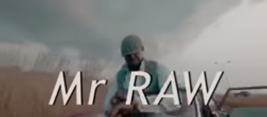 Mr Raw – Like This Video