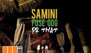 Download Samini Do That ft. Fuse ODG Mp3 Video Download