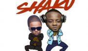Download DJ Prince ft Skales Shaku Shaku Mp3 Download