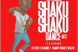 Download DJ Hol Up Official Shaku Shaku Dance 2018 Mix