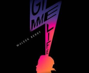 Download Maleek Berry Gimme Life Mp3 Download