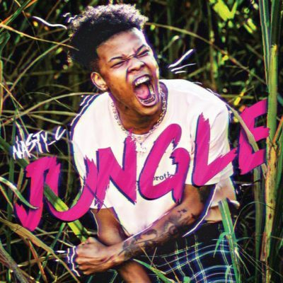Download  Nasty C Jungle Mp3 Download
