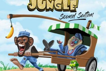 Download Sound Sultan Naija Jungle Mp3 Download