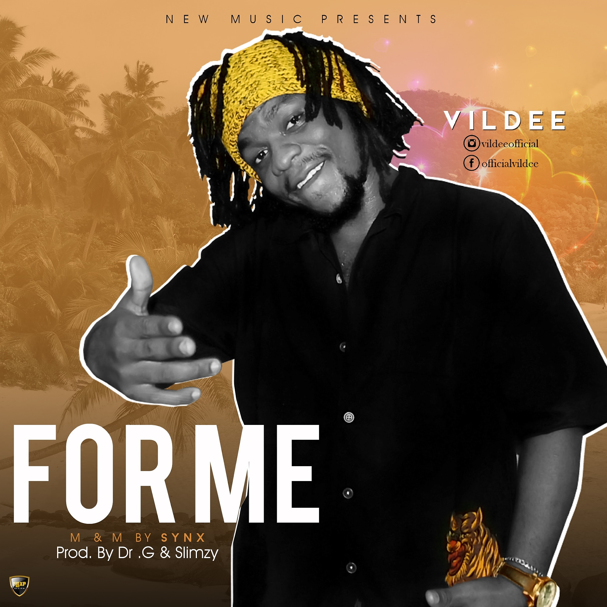 Download Vildee For Me Mp3 Download