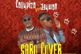 Download Collypizo x Jaywon Saro (Cover) Mp3