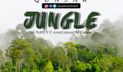 Quasar Jungle Nasty C Cover Mp3 Download
