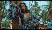 Tiwa Savage  One Video Download