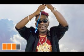 Shatta Wale My Level Video Download