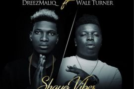 Dreezmaliq ft Wale Turner Shayo Vibes Mp3 Download