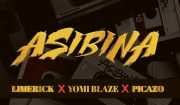 Limerick x Yomi Blaze x Picazo Asibina Mp3 Download