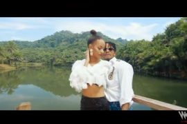 Diamond Platnumz The One Video Download