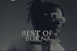 Download DJ Oskabo Best Of Burna Boy Mix