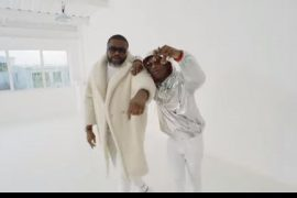Larry Gaga Low Ft. Wizkid Video Download