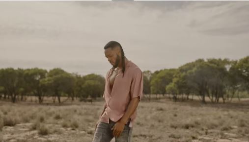 Flavour – Ariva Video Download