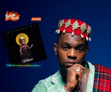 Wilmer: Why Is Patoranking's Album Release Not So Impressive?