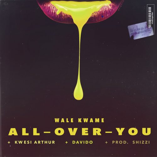 Wale Kwame – All Over You ft. Davido & Kwesi Arthur Mp3 Download