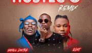 Destiny Boy Ft. Qdot & Small Doctor – Hustle O (Remix) mp3 Download