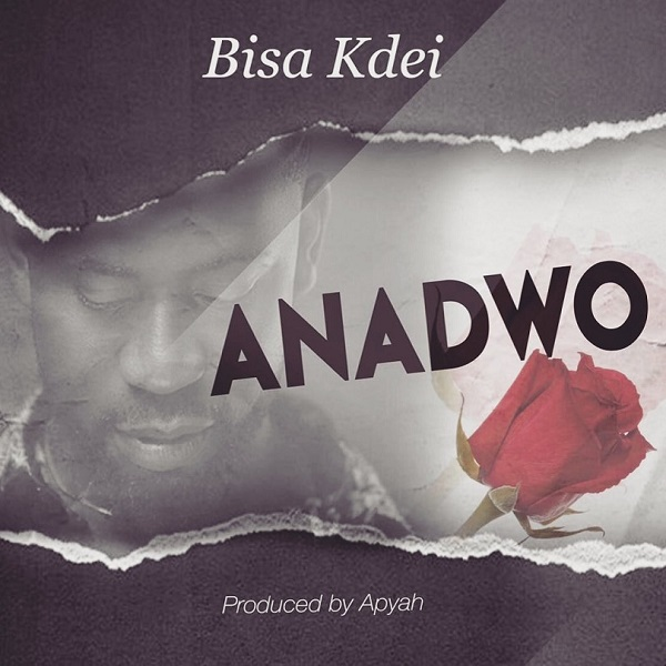 Bisa Kdei – Anadwo Mp3 Download