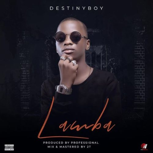 Destiny Boy Lamba Mp3 Download