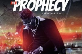 Shatta Wale – Prophecy Mp3 Download