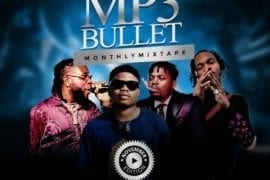DJ PlentySongz Mp3Bullet Monthly Mixtape (November Edition) #Street