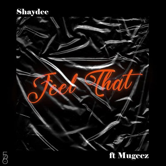 Shaydee ft. Mugeez – Feel That Mp3 Download