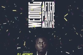 Dj Instinct - Wedding After Party Mixtape