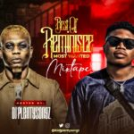 DJ PlentySongz - Best Of Reminisce Most Wanted Mix