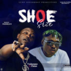 Vudumane ft Zlatan – Shoe Size [Music]