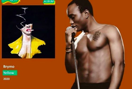 All-time Nigerian artists with the most projects