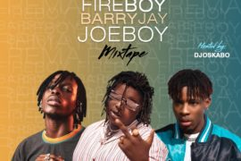 DJ Oskabo - Best Of Fireboy DML, Joeboy and Barry Jhay Mix