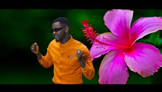 Kizz Daniel - Ada Mp4 Video