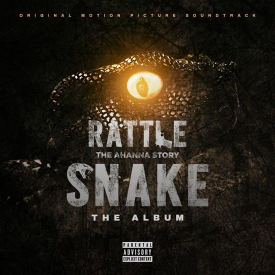 "Larry Gaaga – ""Rattle Snake The Album"" ft. 2Baba, Patoranking, D'banj, & Others"